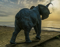 Elephant statue at the beach Royalty Free Stock Images