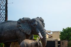 Elephant statue closeup bluesky vizag city stock photography