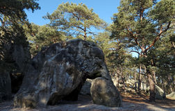 Elephant statue in Fontainebleau forest Stock Image