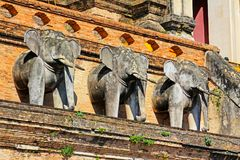 Free Elephant Statue In Wat Chedi Luang, Chiang Mai, Thailand Royalty Free Stock Photos - 118269648
