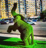 Elephant statue sculpture made of grass on background city, topiary art.  royalty free stock photography