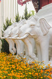 Elephant Statue. 3 white elephant statues that lined Stock Images
