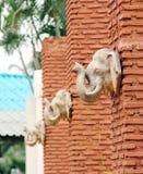 Elephant stone statue. Closeup head of elephant stone statue on orange brick pillars outdoor royalty free stock images