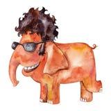 Elephant in sunglasses Royalty Free Stock Photos