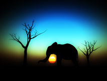 Elephant Sunrise 4. An image of an elephant silhouette with a African sky background Royalty Free Stock Photography