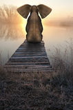 Elephant Sunrise Sunset Peaceful Landscape. An elephant sits on a pier by the water in a peaceful and serene landscape scene. The animal is at peace with the Royalty Free Stock Photo
