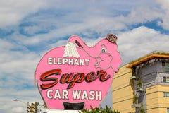 Elephant Super Car Wash Royalty Free Stock Image