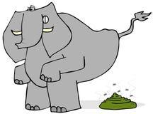 Elephant taking a crap Stock Photo
