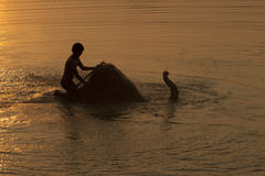 Elephant taking a shower with mahout during sunset Royalty Free Stock Images