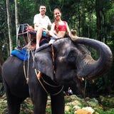 Elephant. Thailand family love riding royalty free stock photos