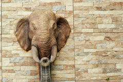 Elephant throws water on cement wall Royalty Free Stock Photography