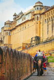 Elephant Tour At Amber Fort Stock Photography