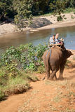 Elephant trekking. Pai jungle, Thailand - FEBRUARY 08: Trekking on February 08, 2011 in Pai Thailand. Tourists on elephant trekking in an elephant camp in Royalty Free Stock Photo