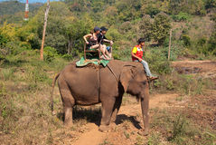 Elephant trekking. In an elephant camp in northern Thailand Royalty Free Stock Photography