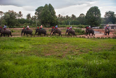 Elephant trekking. In an elephant camp in northern Thailand Stock Images