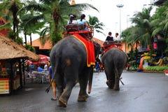 Elephant Trekking Stock Photo