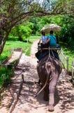 Elephant trekking through jungle in Kanchanaburi, Thailand. Kanchanaburi, Thailand - May 23, 2014:Elephant trekking through jungle in Kanchanaburi, Thailand Royalty Free Stock Photo