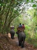 Elephant trekking in northern Thailand. Elephant trekking through jungle in northern Thailand Royalty Free Stock Photos