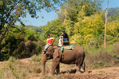 Elephant trekking. Pai jungle, Thailand - FEBRUARY 08: Trekking on February 08, 2011 in Pai Thailand. Tourists on elephant trekking in an elephant camp in Stock Photo