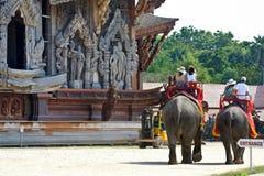 Elephant trekking in Thailand. Elephant trekking in sanctuary of Truth Royalty Free Stock Photo