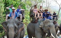 Elephant Trekking. Tourists having the elephant trekking in the Maesa Elephant Camp, Chiang Mai, Thailand Stock Image