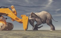 An elephant tries its force Royalty Free Stock Image