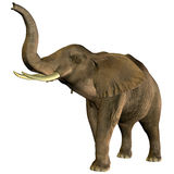 Elephant trumpeting. 3D rendering of an African elephant with raised trunk Stock Photo