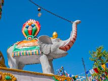 Elephant trunk raised in Dharamsala Stock Photos