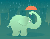 Elephant with Umbrella. Illustration of an elephant standing in the rain under a tiny umbrella Stock Photography