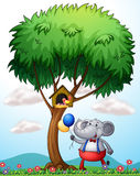 An elephant under the tree Royalty Free Stock Photos