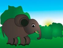 Elephant. Vector illustration of an elephant Royalty Free Stock Photography