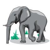 Elephant vector illustration. Elephant animal wildlife vector art. Vector design element stock illustration