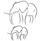 Elephant. Vector illustration : Elephant sketch on a white background vector illustration