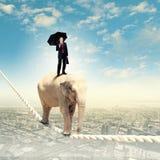 Elephant walking on rope. Image of elephant walking on rope high in sky Royalty Free Stock Photo
