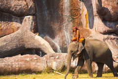 Elephant Walking Scenic Waterfall Cliff Royalty Free Stock Images
