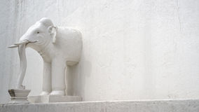 Elephant in the wall Stock Photography