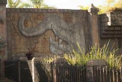 Elephant on wall at australia zoo royalty free stock photography