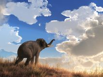 Elephant watching the Dawn vector illustration