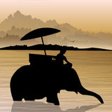 Elephant in water. Silhouette of elephant in water Stock Photo