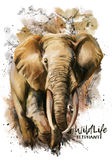 Elephant watercolor painting. Elephant watercolor illustration in grunge style royalty free illustration