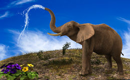 Elephant Watering the garden. Royalty Free Stock Photography