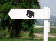 Elephant way Stock Images