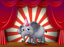 An elephant wearing a party hat at the stage Royalty Free Stock Images