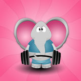 Elephant weightlifting Stock Images
