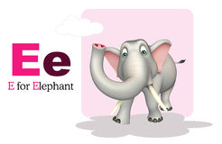 Elephant wild animal with alphabate Royalty Free Stock Photo