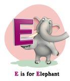 Elephant wild animal with alphabate Stock Image