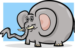 Elephant wild animal cartoon illustration Stock Photos