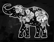 Elephant with wild rose flowers, star ornaments. Royalty Free Stock Photography