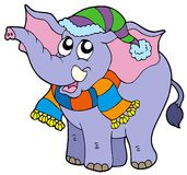 Elephant in winter clothes Royalty Free Stock Photo