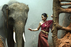 The elephant with woman in traditional dress,Thailand